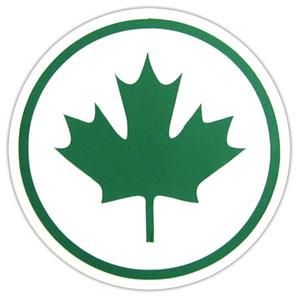 Zielony liść to symbol młodych kierowców
