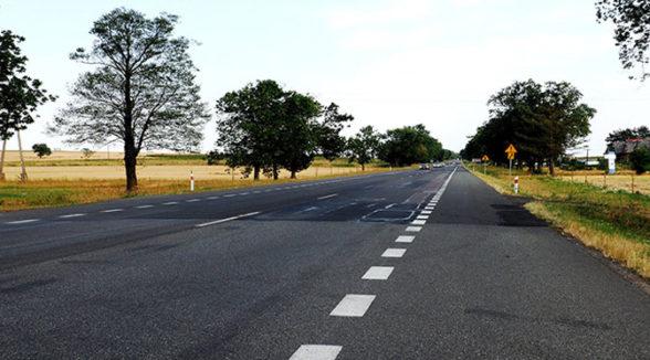 Droga Krajowa 17 w województwie lubelskim